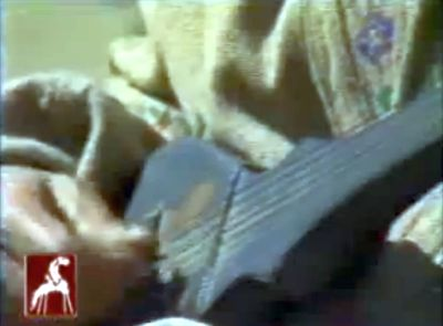 Musical Instrument of Ismailis of Chitral: Gharba - A Plucked Lute
