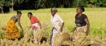 New AKDN Publication: Aga Khan Development Network in Madagascar