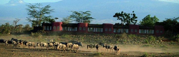 Serena - Amboseli Park, Kenya