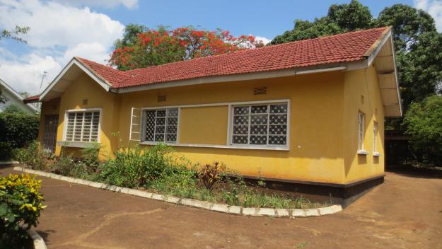 Going home to Moshi, Tanzania | Munira Premji: I WILL SURVIVE
