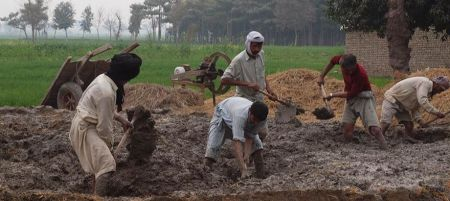 Earth Home Project: Building Homes in Pakistan