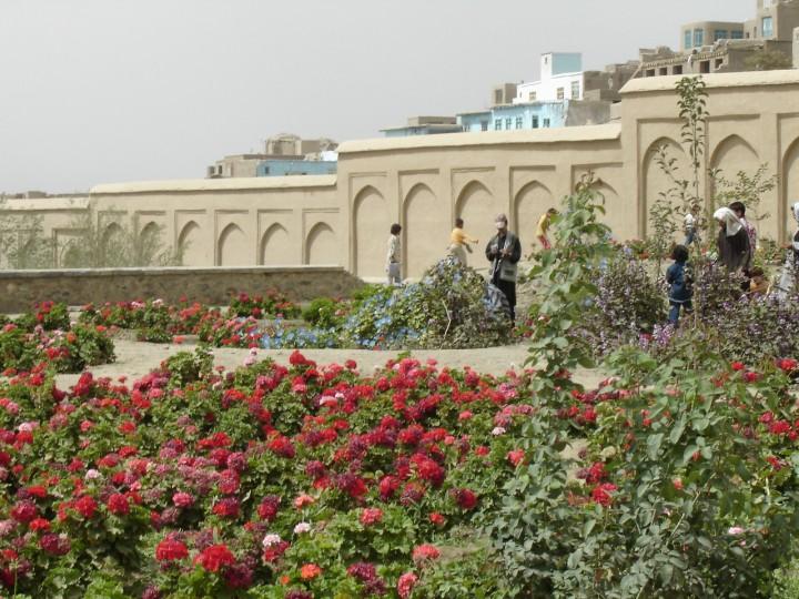 Gardens within Bagh-e-Babur. Kabul, Afghanistan