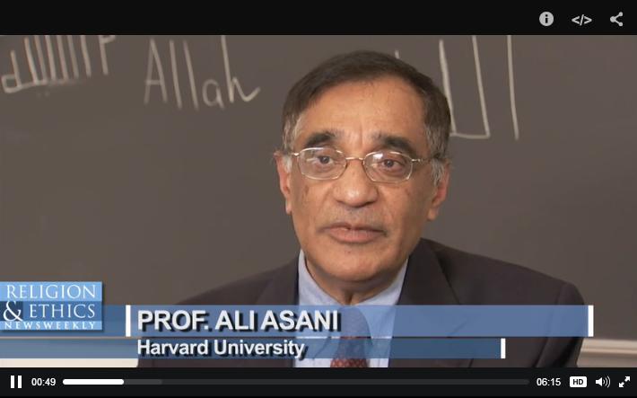 PBS Religion & Ethics: Ali Asani on religious radicalization