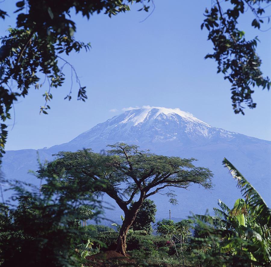 Mt. Kilimanjaro Moshi, Tanzania - David Constantine