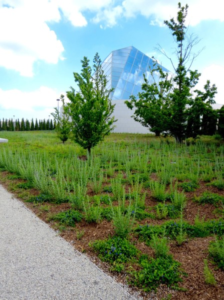 Opencity Projects - Aga Khan Museum