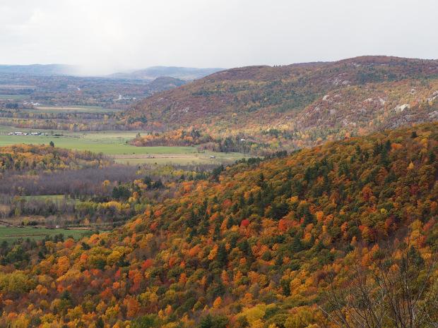 A view of autumn foliage surrounding the Champlain Lookout, Gatineau Park, a few days after the foliage had peaked. (Image: Malik Merchant/Simerg)