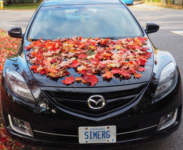 I couldn't live (leave) without them — the blog(s) and the car, says Malik Merchant, Publisher-Editor Simerg and Simergphotos (Image: Malik Merchant/Simerg)