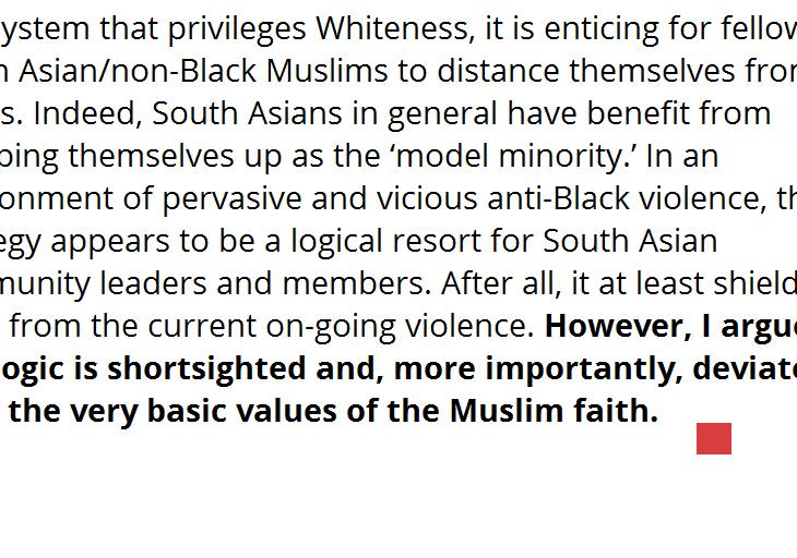Shenila Khoja-Moolji: On why #BlackLivesMatter should matter to non-Black Muslims
