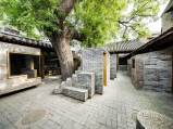 The tree. Aga Khan Award for Architecture 2016 Winner: Hutong Children's Library and Art Centre Beijing, China