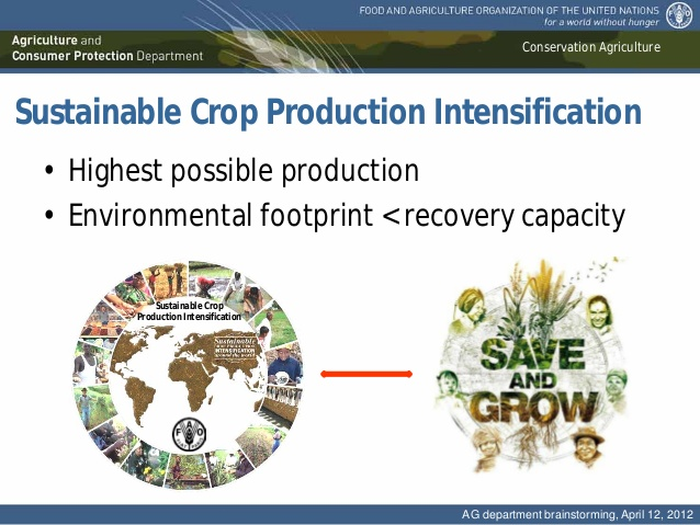 "Professor Amir Kassam: Release of the special edition ""Sustainable Crop Production Intensification"" of the journal of AIMS Agriculture and Food"