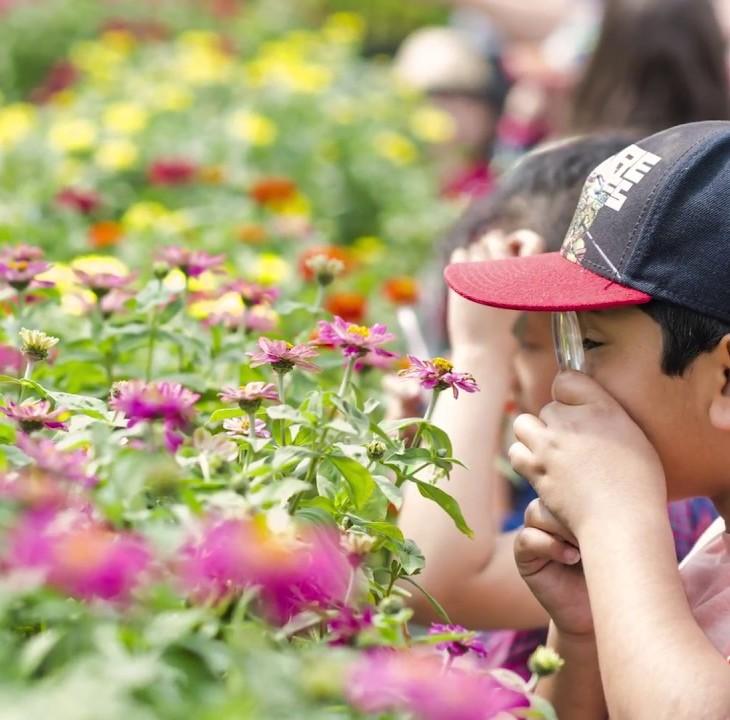 Educational Programming:Aga Khan Garden at the University of Alberta Botanic Garden