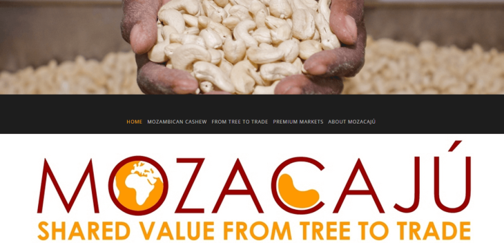 From tree to trade: Cashews in Mozambique