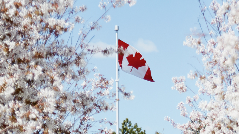 Canada Day 2017 | Aga Khan Museum