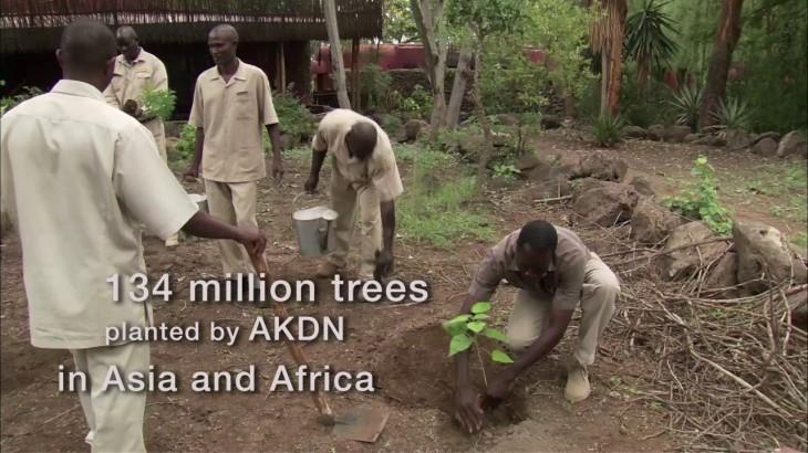 AKDN's impact in numbers.