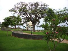 forodhani park zanzibar 31
