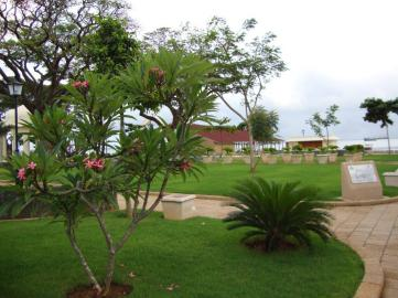 forodhani park zanzibar 41