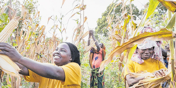 Aga Khan's lifeline for farmers | The Citizen Tanzania