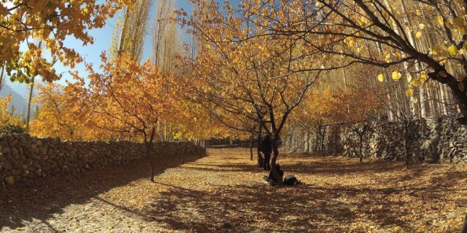 Aga Khan Foundation: Hugely Positive Force in Hunza