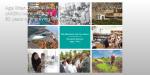 The Diamond Jubilee: 60 Years of Milestones