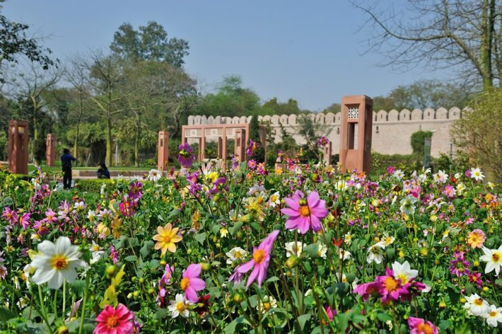 Things To Do in Delhi | Sunder Nursery Near Humayun's Tomb