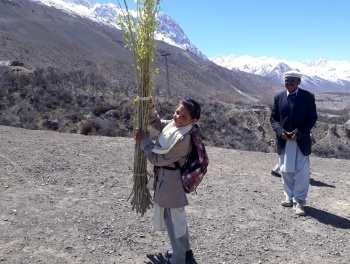 Hunza Serena Inn organizes plantation day at the Aga Khan Diamond Jubilee High School, Zoodkhoon in Chipursan Valley