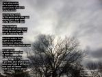 If you stay awake - Rumi