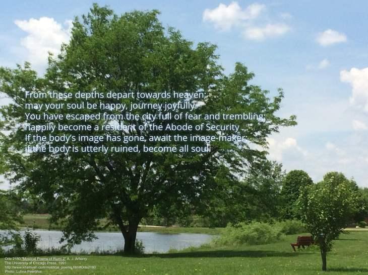 Abode of Security | Rumi