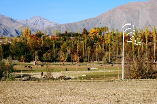 Aga Khan Foundation: 14,000 tourists visited Badakhshan last year