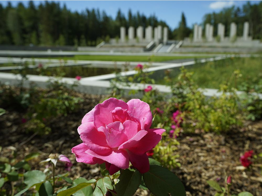 Paula Simons: 'No person leaves unchanged': New Aga Khan Garden a gift of paradise