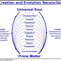 The Ultimate Purpose of Creation: From Celestial Macrocosm to Terrestrial Microcosm