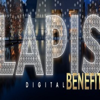 @AgaKhanMuseum: 2020 Lapis Digital Benefit
