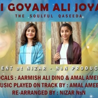 Ali Goyam Ali Joyam || Kids Version || NsN Production